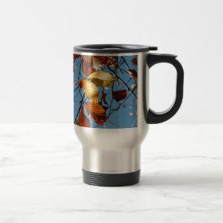 Autumn beech leaves coffee mug