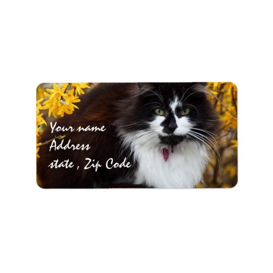 Autumn Cat Address Label
