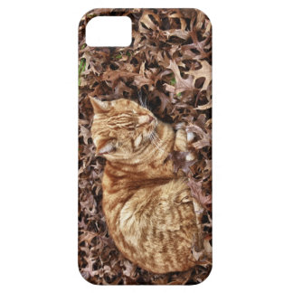 Autumn Cat iPhone case