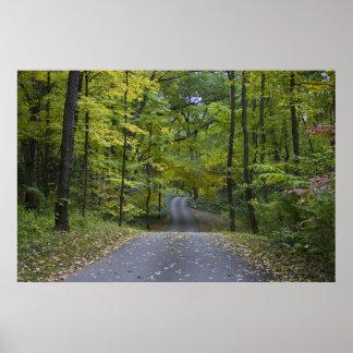 Autumn Drive framed print