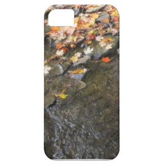 autumn enthusiast barely there iPhone 5 case