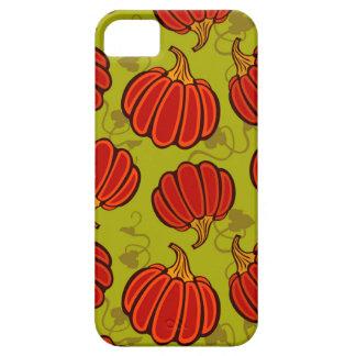 Autumn harvest iPhone 5 case