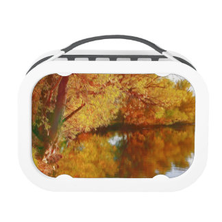 Autumn lake with trees at the river bank yubo lunch box