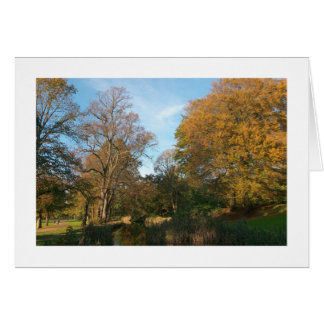 Autumn Landscape, Bute Park, Cardiff (Bordered) Card