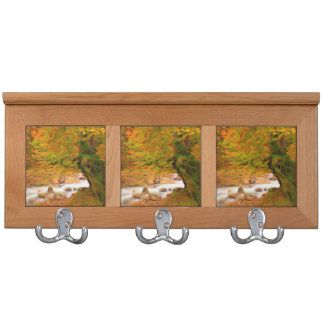 Autumn landscape of the river and the trees coat rack