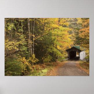 Autumn landscape, Vermont, USA 2 Poster