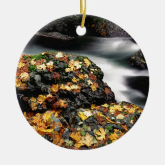 Autumn Leaf Covered Rock Elk River Oregon Christmas Ornament
