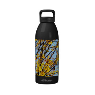 Autumn Leaves Against Blue Sky Water Bottles