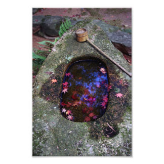 Autumn leaves in Japanese pond Photographic Print