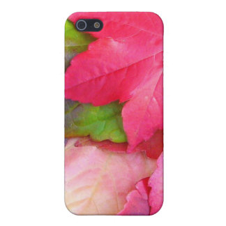 Autumn Leaves iPhone 4 case