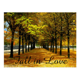Autumn Leaves Save The Date Post Card
