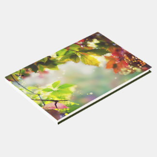Autumn, leaves, sheets, colored guest book