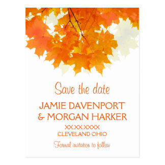Autumn Maple Leaves Wedding Save the Date Postcard
