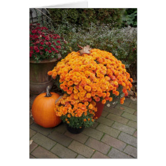 Autumn mums card