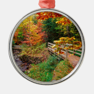 Autumn Munising Trail Alger County Michigan Christmas Ornament