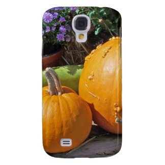 Autumn Pumpkins and Flowers Galaxy S4 Case