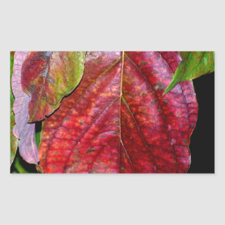 Autumn Red Dogwood Leaf Rectangular Sticker