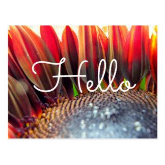 Autumn Sunflower Postcard