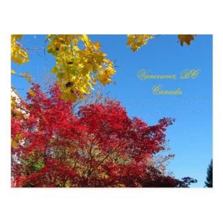 Autumn Vancouver, BC Postcard