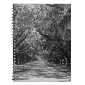 Avenue Of Oaks Grayscale Spiral Notebook