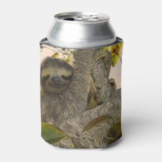Awesome Sloth