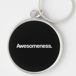 Awesomeness Silver-Colored Round Key Ring