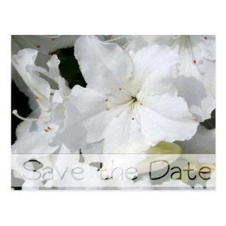 Azaleas Floral Wedding Save the Date Postcard 3