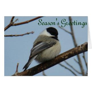 B0021 Chickadee Card