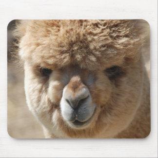 Baby Alpaca Mouse Pad