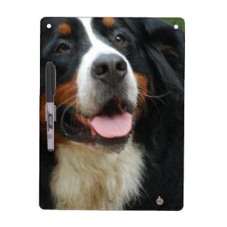 Baby Bernese Mountain Dog Dry Erase Board