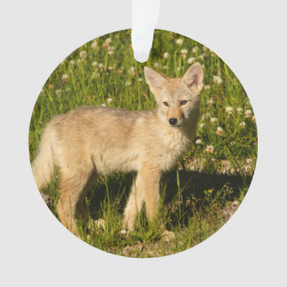 baby coyote ornament