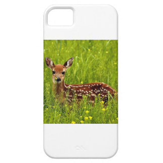 Baby Deer Fawn iPhone 5 Covers