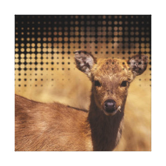 Baby Deer Wall Portrait Canvas Print