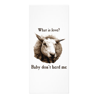Baby Don't Herd Me Sheep Rack Card