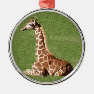 Baby Giraffe Christmas Ornament