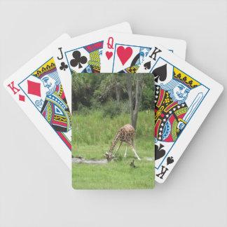 Baby Giraffe Playing Cards