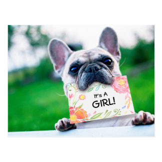 Baby Girl Floral Announcement With Dog Custom Postcard
