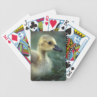 baby goose bicycle playing cards