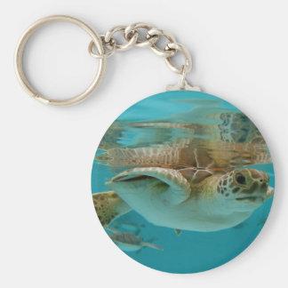Baby Green Sea Turtle Basic Round Button Key Ring