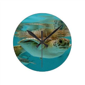 Baby Green Sea Turtle Round Clocks