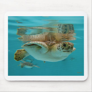 Baby Green Sea Turtle Mouse Pad