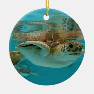Baby Green Sea Turtle Round Ceramic Decoration