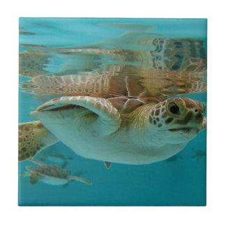 Baby Green Sea Turtle Small Square Tile
