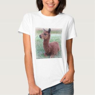 Baby Hannah Alpaca Tee Shirts