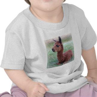 Baby Hannah Alpaca Tee Shirt