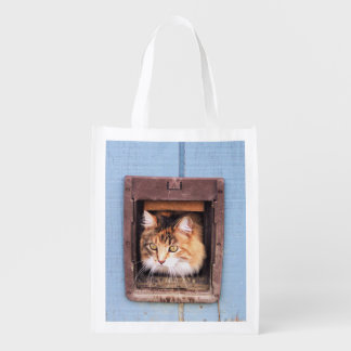 Baby in Her Shed Reusable Grocery Bag