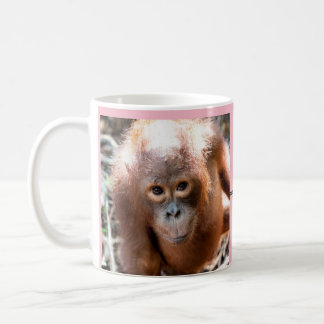 Baby Orangutan Orphan Kobe with OFI Coffee Mug