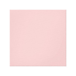 Baby Pink Gallery Wrap Canvas