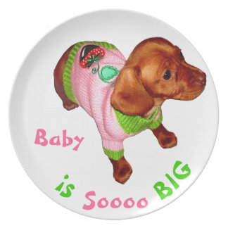 Baby Plates with Name and Cute Miniature Dachshund