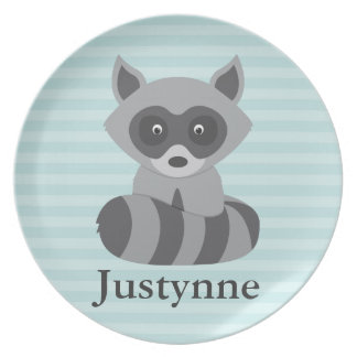 Baby Raccoon Plate
